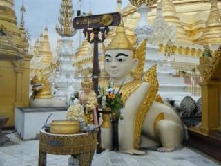 Shwedagon_dog.jpg